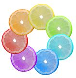 Seven-flower. Multi-coloured segments of a lemon Royalty Free Stock Photography