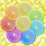 Seven-flower. Multi-coloured segments of a lemon Royalty Free Stock Images