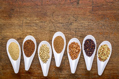 Seven healthy, gluten free grains. (quinoa, brown rice, amaranth, teff, buckwheat, sorghum. kaniwa), top view of small spoons against rustic wood with a copy Stock Images