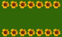 Happpy summer background with sunflowers Royalty Free Stock Photo