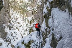 Seven Ladders Canyon Sapte Scari in Piatra Mare mountains, Romania. Hiker climbing an iron ladder, inside a canyon, during a Winter hike, with rocks and trees stock photography