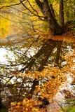Seven Lakes. National park at Turkey Stock Photo