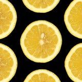 Seven Lemon Slices. Seven slices of lemon on a black background stock photo