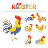 Seven lovely cockerels on a white background. Illustration in flat style. Cocks crowing. Cock-a-doodle-doo. Cockerel slipping. Rooster symbol of Chinese New Stock Photography