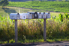 Seven mail boxes on a country road. Seven numbered mail boxes along a country road in the summertime stock images