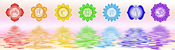 The seven main chakras Stock Photos