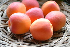 Seven mature apricots close-up Royalty Free Stock Images