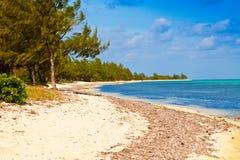 Cayman Islands. Seven Mile Beach on Grand Cayman, Cayman Islands Stock Photos