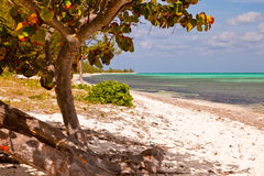 Cayman Islands Stock Image