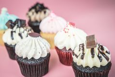 Seven mini fancy cupcakes on pink. Background Stock Photography