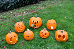 Seven Pumpkins Stock Photos