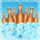 Seven realistic mock up brown bottle of beer among ice cubes on blue background. Vector illustration three bottle sharp and four bottles depth of field Stock Photos
