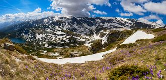 Seven Rila Lakes, Rila mountains, Bulgaria. Panoramic view of Seven Rila Lakes - group of glacial lakes in Rila mountains, Bulgaria with spring flowers in Royalty Free Stock Images