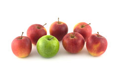Seven ripe red and green apples isolated closeup Stock Image