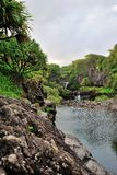 Seven Sacred Pools of Ohio, Maui, Hawaii royalty free stock photo