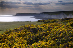 Seven Sisters from Birling Gap Summer evening. Royalty Free Stock Photography