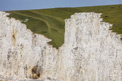 Seven Sisters Chalk Cliffs Stock Photography