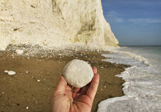 Seven sisters cliff, English Channel. Stock Images