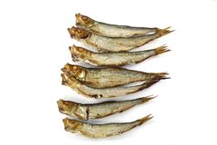 Seven smoked sprats. Smoked whole sprats on white background Royalty Free Stock Images