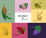 Seven species of the Holy Land, Jewish holiday Shavuot. Seven species of the Holy Land, two grains and five fruits, Jewish holiday Shavuot,  illustration Stock Photography