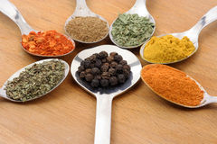 Seven spices Stock Image