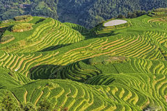 Seven Stars Accompany The Moon, Part Of The Dragons Backbone Rice Terraces Stock Photos