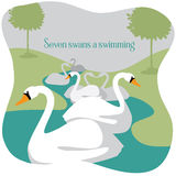 Seven swans a swimming Twelve Days of Christmas Royalty Free Stock Photos