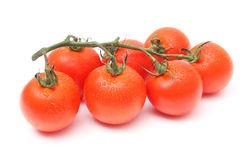Seven tomatoes with drops Royalty Free Stock Images