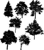 Seven tree silhouettes Stock Photo