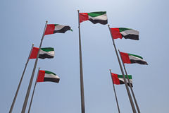 Seven United Arab Emirates flags Stock Image
