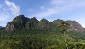 Seven virgin hills. Mountain range in Maskeliya, Sri Lanka Stock Photography