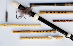 Seven wooden flutes and wooden recorders Royalty Free Stock Images