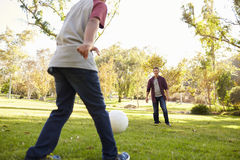 Seven year old boy kicking football to his dad in park, crop Stock Image