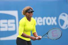 Seventeen times Grand Slam champion Serena Williams practices for US Open 2014 Royalty Free Stock Images