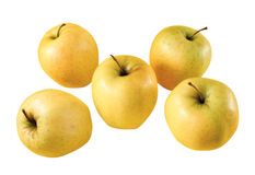 Several apples Royalty Free Stock Photography