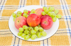 Several apples, nectarines and grape on a white dish Stock Photography