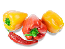Several bell peppers and peppers chilly Royalty Free Stock Image