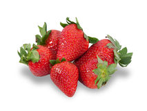 Several berries ripe strawberries isolated Royalty Free Stock Photography