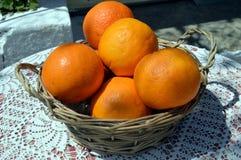 Several biological oranges. Stock Photo
