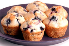 Several blueberry muffins on purple plate. Close up of several blueberry muffins in a group on a purple plate with white background. Selective focus on front Royalty Free Stock Image