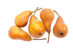 Several Bosc pear on a light background Royalty Free Stock Photos