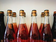 Bottles of red wine. Several bottles of red wine royalty free stock images