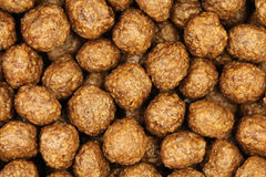 Several brown chocolate balls background Stock Photography