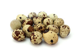 Several brown spotted quail eggs Stock Photo