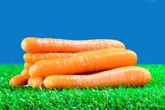 Several carrots on green grass Stock Images