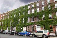 Several cars parked near the four-storey building. Of red brick with ivy Stock Photography