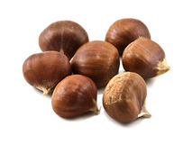 Several chestnuts Royalty Free Stock Image