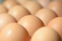 Several Chicken Eggs in tray. Food Royalty Free Stock Photo