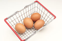 Several chicken eggs Stock Images