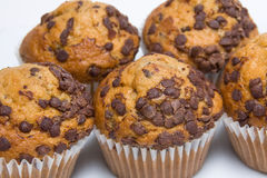 Several chocolate muffins Stock Photo
